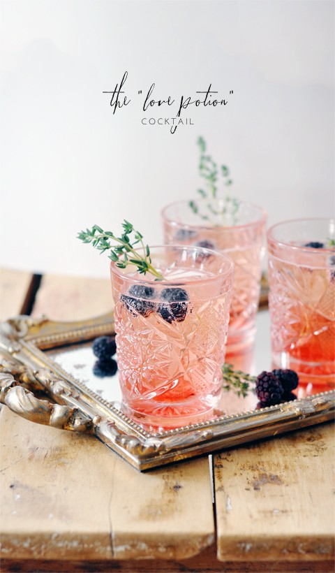 blackberry-thyme-cocktail